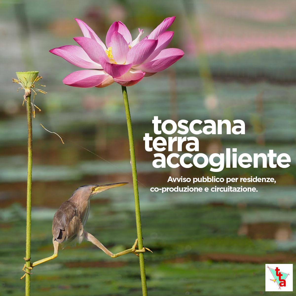 Bando Toscana Terra Accogliente 2021 - teatro
